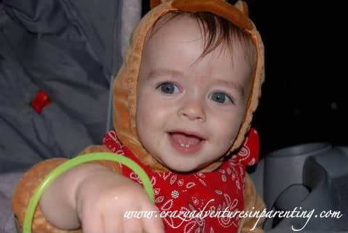 infant horse costume