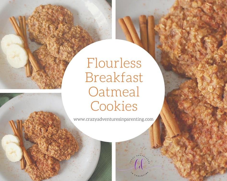 Flourless Breakfast Oatmeal Cookies