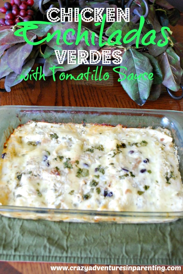 creamy chicken enchiladas verdes with tomatillo sauce