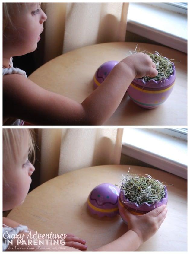 kids love Easter Egg Hunt