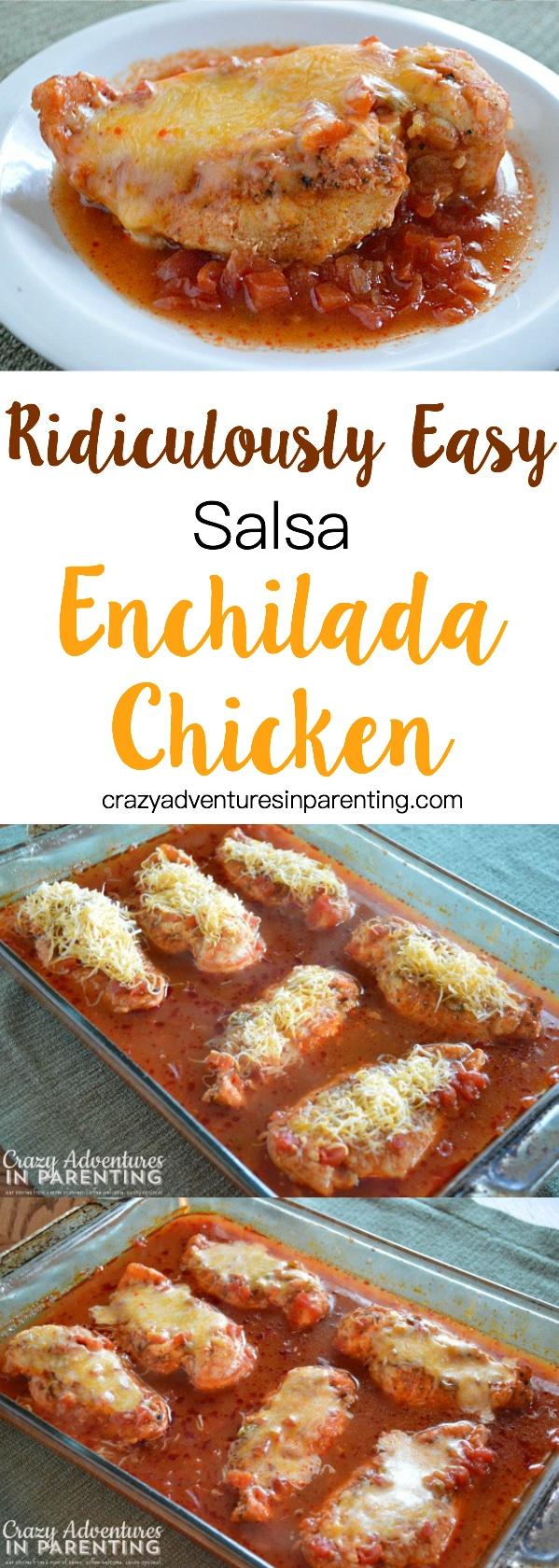 Ridiculously Easy Salsa Enchilada Chicken