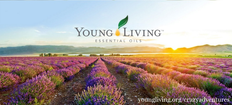 Young Living Oils New Logo