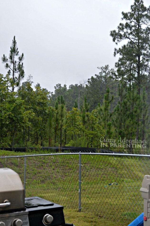 rainy North Carolina