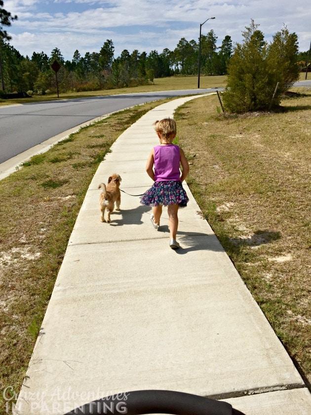 Baby V walking the dog