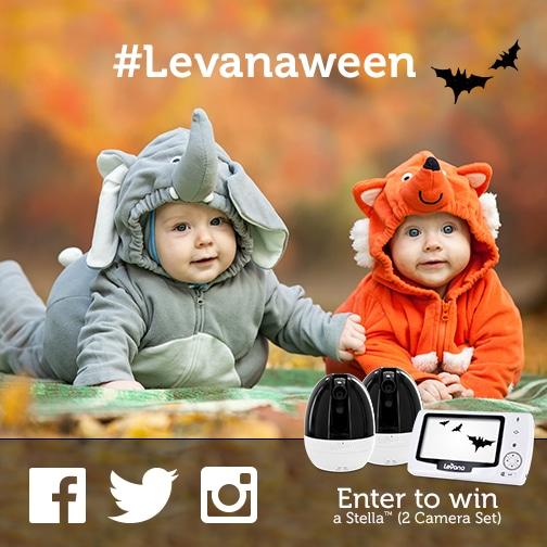 levanaween contest