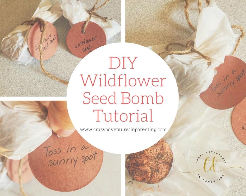 Wildflower Seed Bomb Tutorial