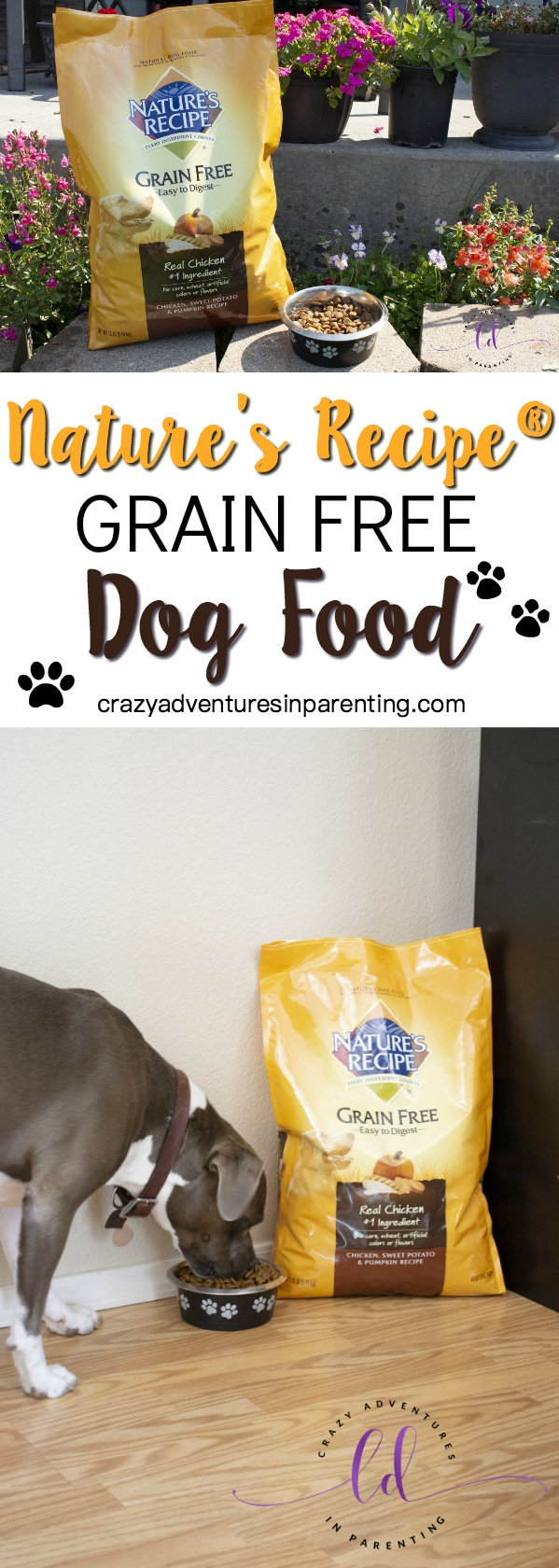 Nature's Recipe Grain Free Dog Food