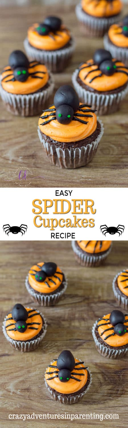 Easy Spider Cupcakes Recipe