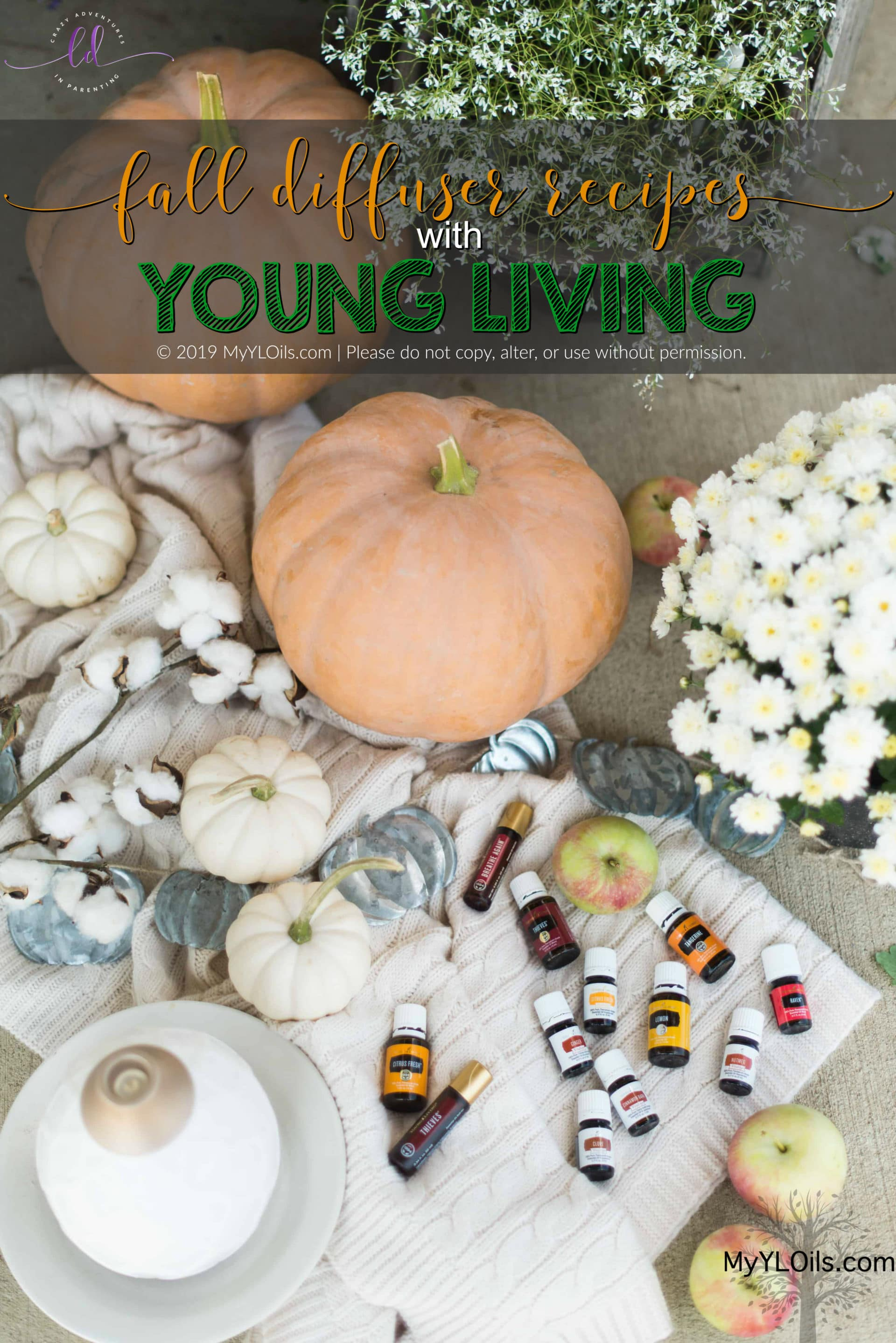 Young Living Fall Diffuser Recipes Crazy Adventures In Parenting