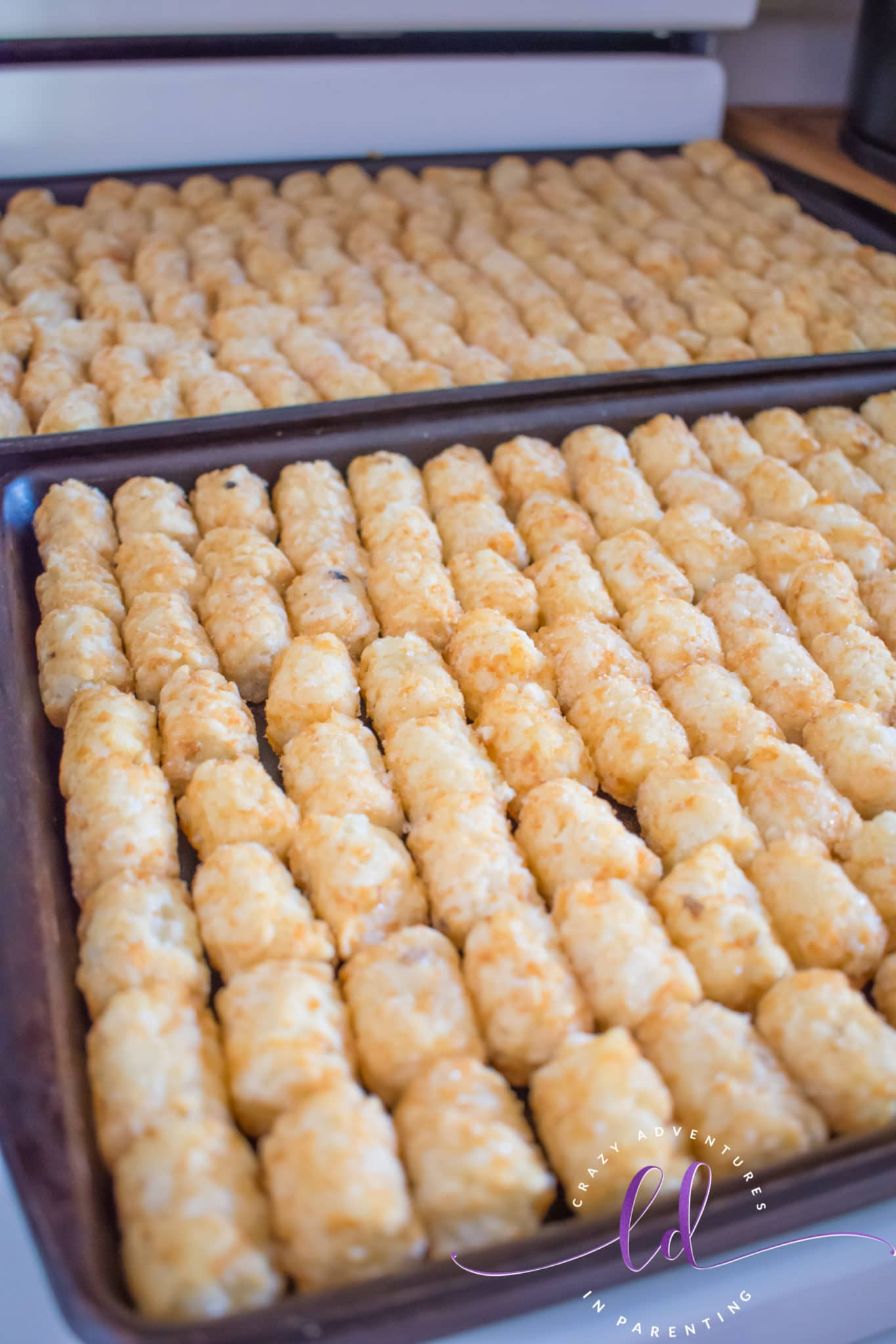 Frozen Tater Tots Ready to Cook for Beef Totchos Tater Tot Nachos