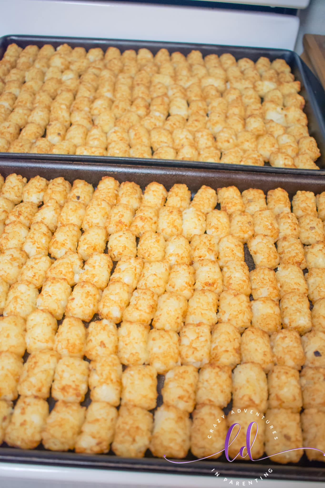 Heated Tater Tots Ready to Make Beef Totchos Tater Tot Nachos