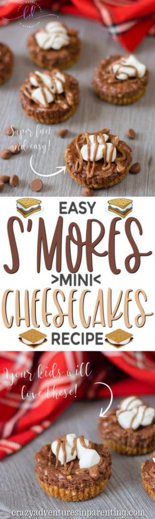 Easy S'mores Mini Cheesecakes Recipe