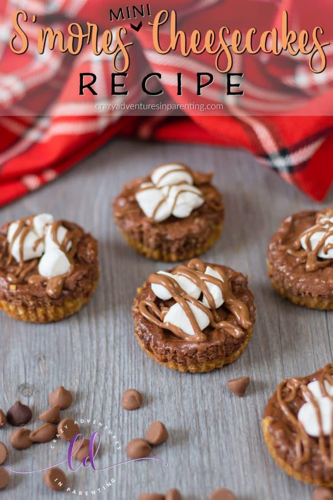 S'mores Mini Cheesecakes Recipe